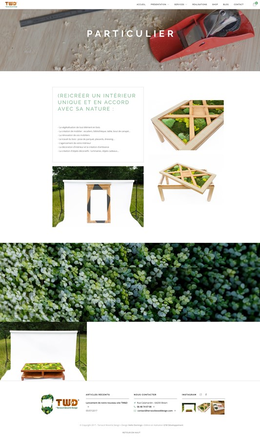 Site vitrine et boutique de Terracol Wood & Design